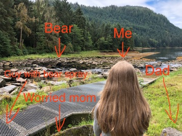 neets bay bear watch.jpg